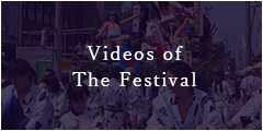 Videos of The Festival